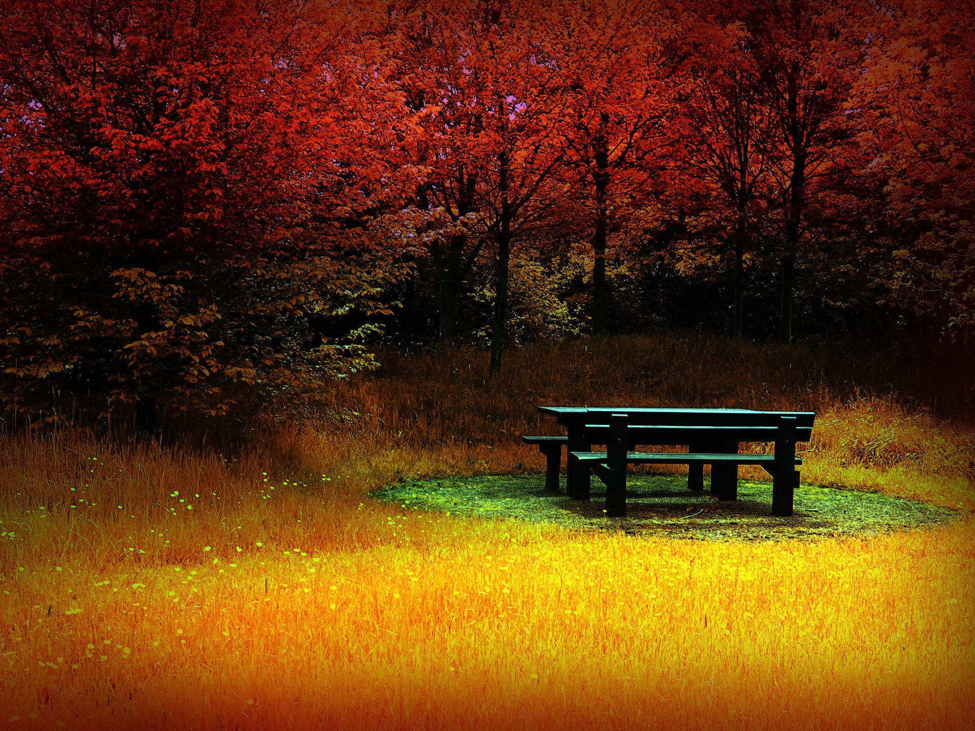 Autumn HD desktop wallpaper2013 1920x1440