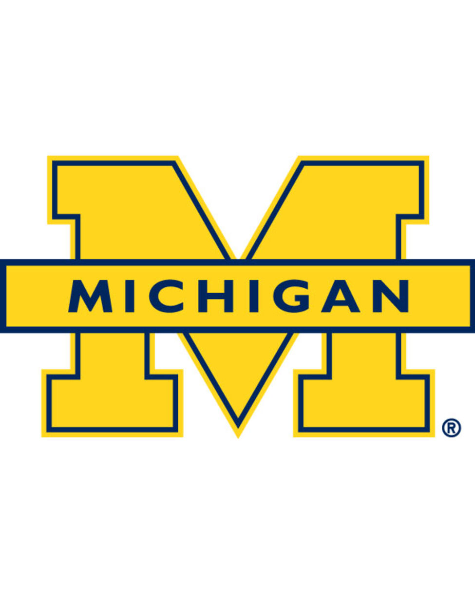 URL httpwwwsmscscomphotomichigan wolverines wallpapers7html 975x1218