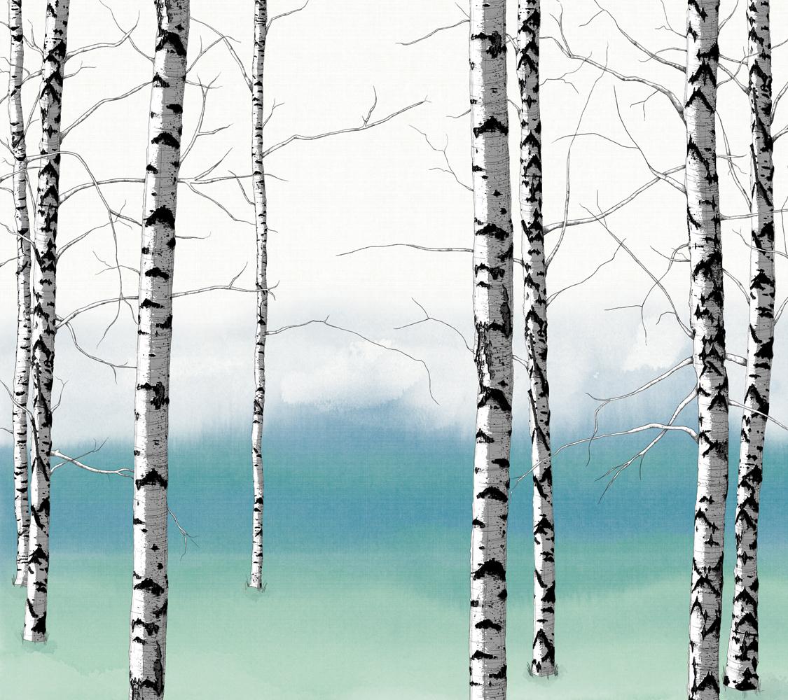 birch tree background birch trees mural 2 zoom in