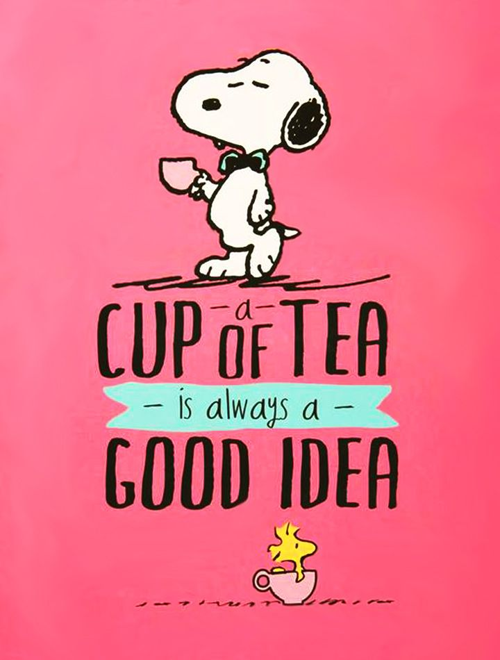 Snoopy Cup Of Tea computer desktop hd wallpapers backgrounds 720x950