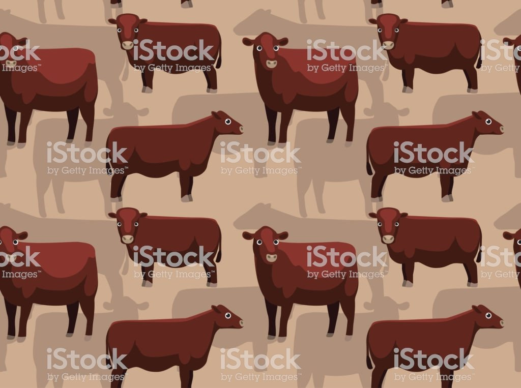 Cow Red Poll Cartoon Background Seamless Wallpaper Stock 1024x763