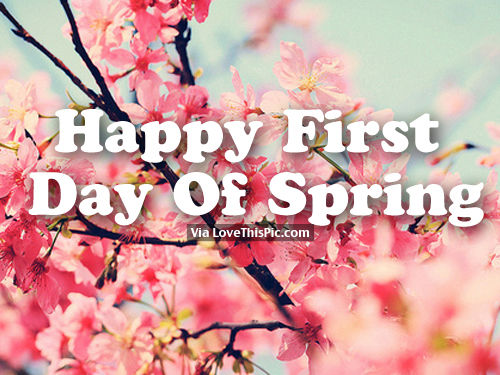 Happy First Day Of Spring Quotes wwwpixsharkcom 500x375