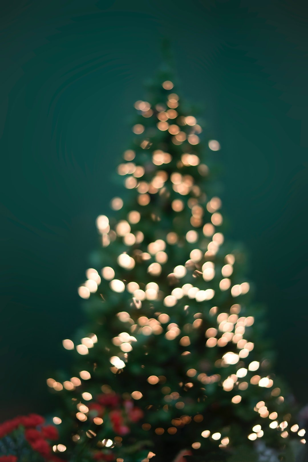 900 Christmas Tree Images Download HD Pictures Photos on Unsplash 1080x1620
