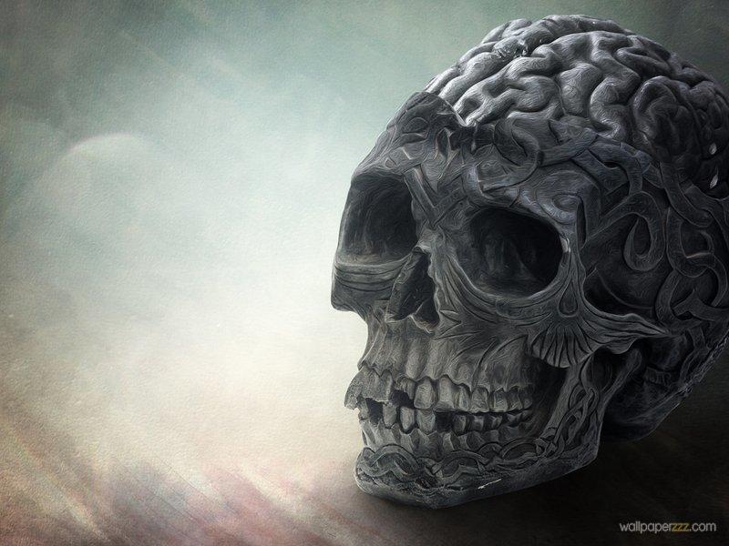 Download Skull Wallpaper Wallpaper 800x600