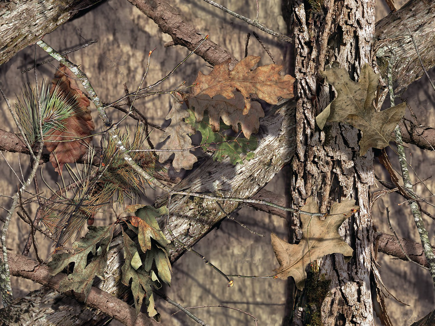 Mossy Oak Break Up Wallpaper Wallpapersafari