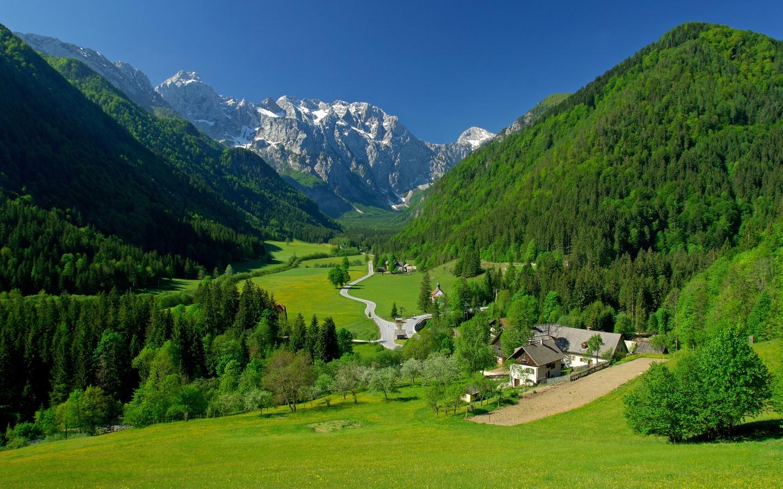 Free Download 1440x900 Spring Alpine Valley Mountains Fields