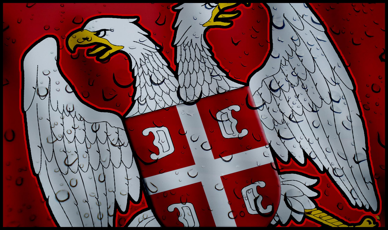 Serbian Eagle by stoykeez 2448x1455