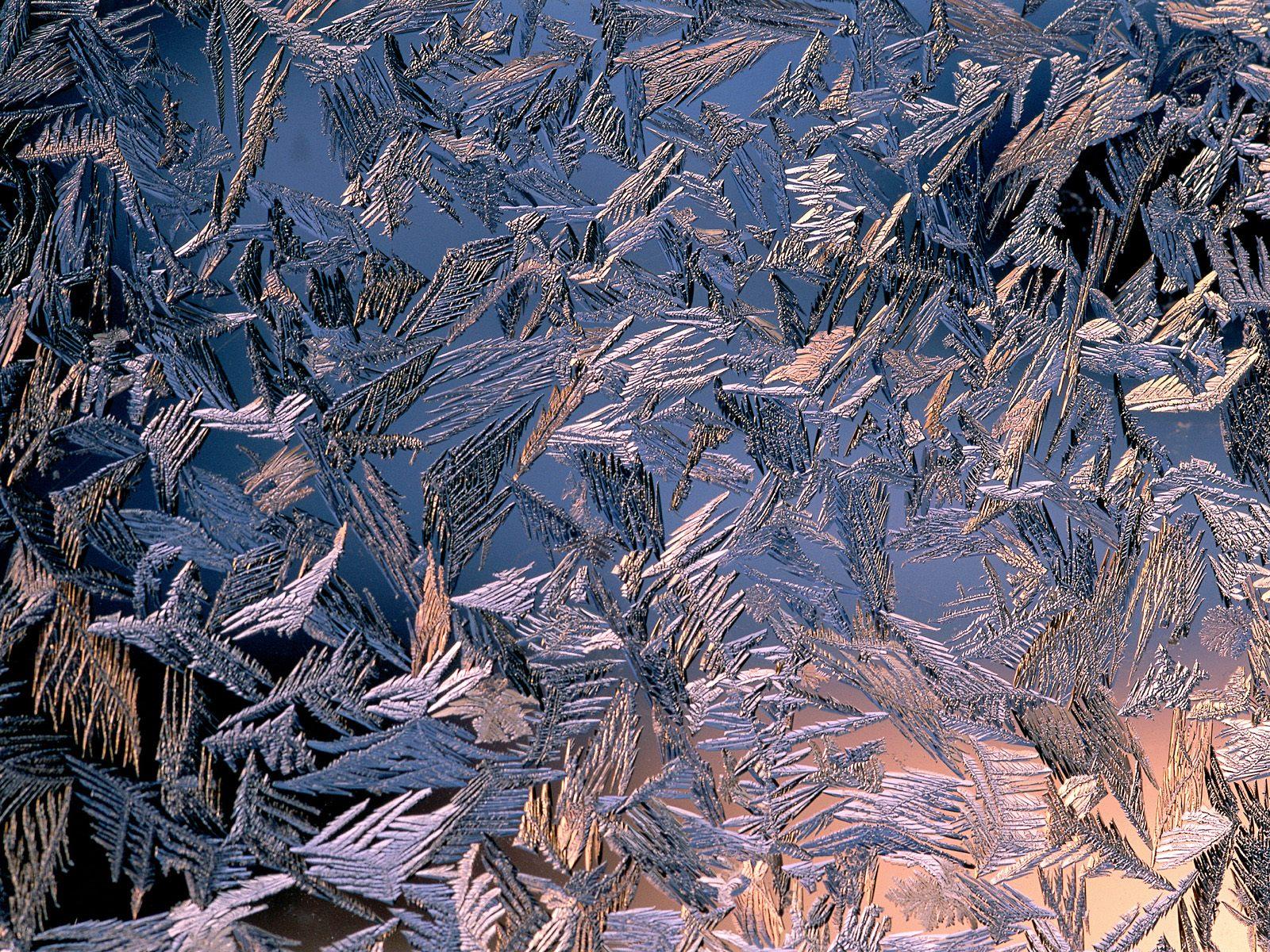 1600x1200 Morning frost desktop PC and Mac wallpaper 1600x1200