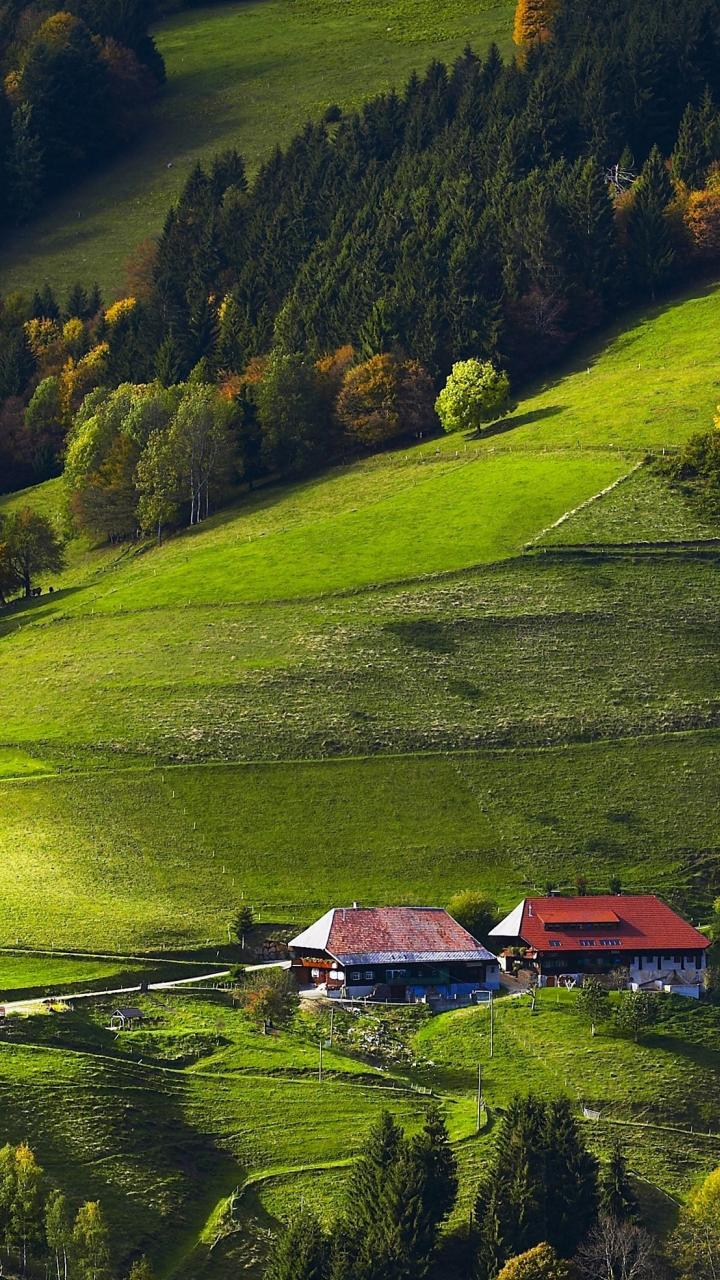 Germany black forest fields forests wallpaper 77906 720x1280