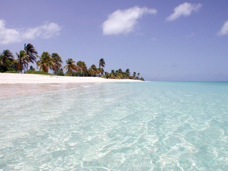 Thanks for downloading Caribbean beach wallpaper MyEarthWallpapers 800x600
