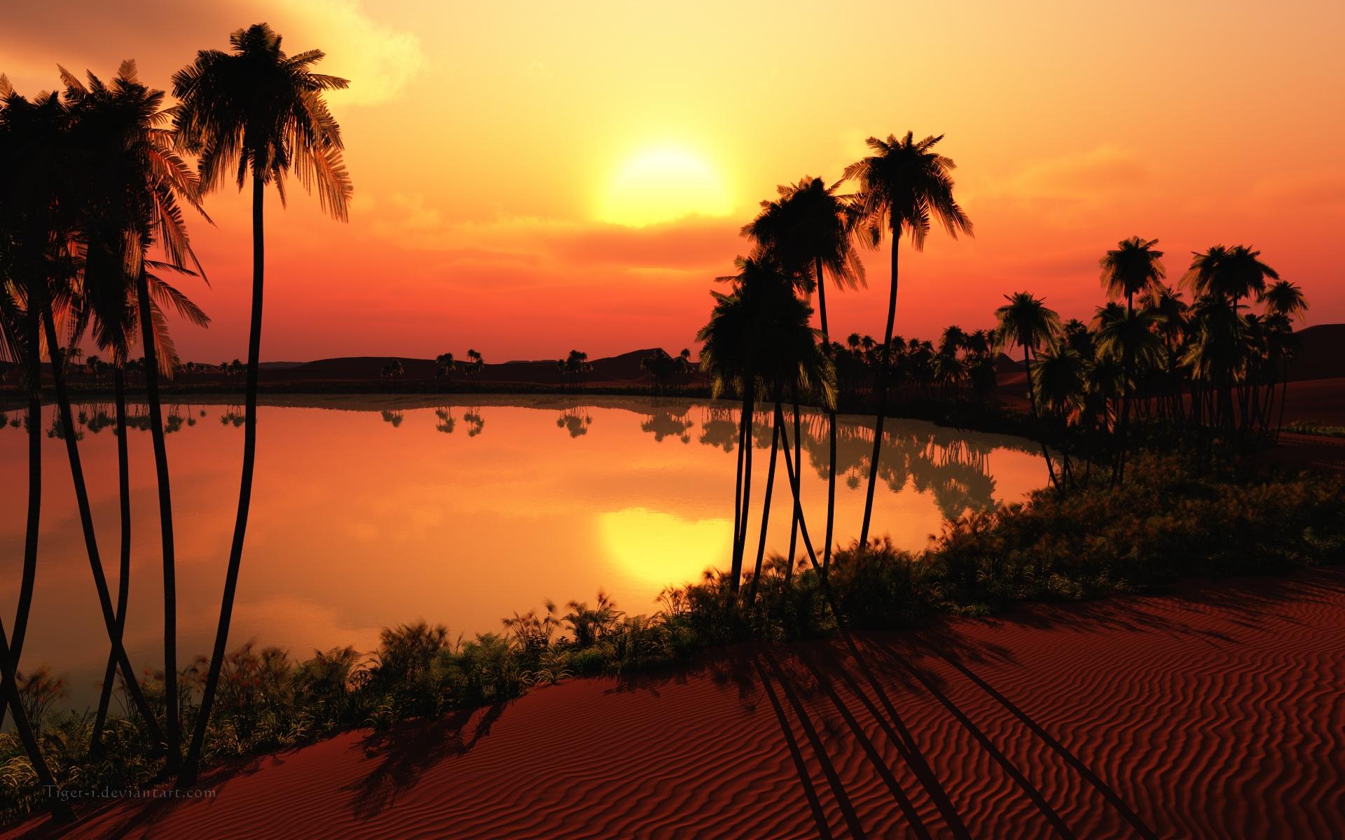 Oasis Sunset With Palm Trees desktop wallpaper WallpaperPixel 1920x1200