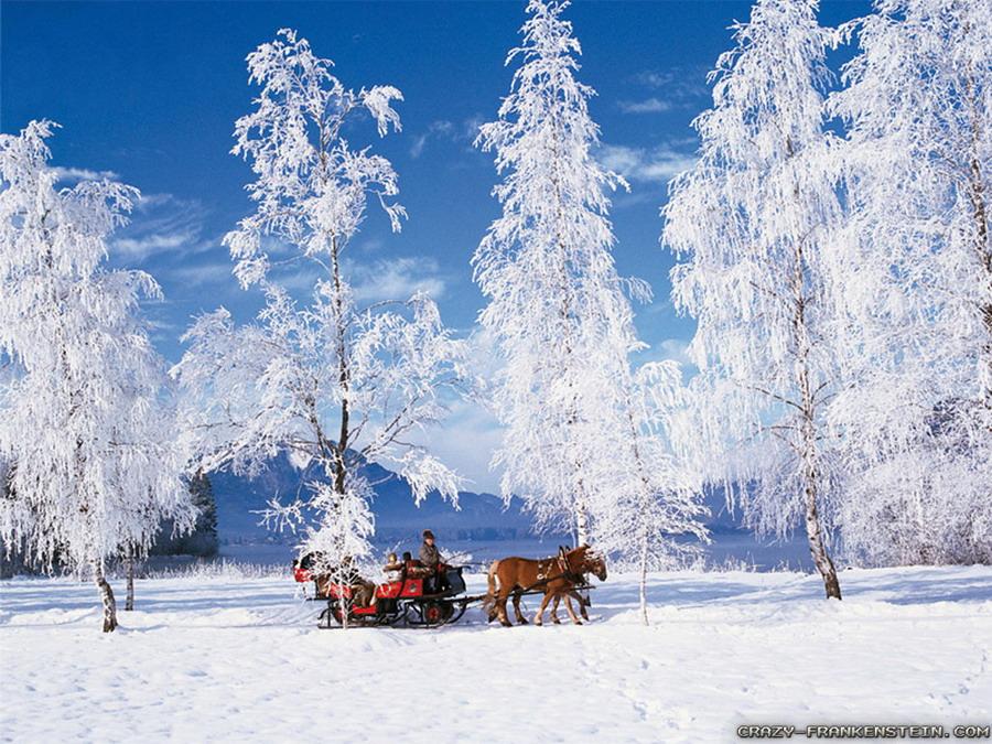 Winter in Switzerland WINTER Pinterest 900x675