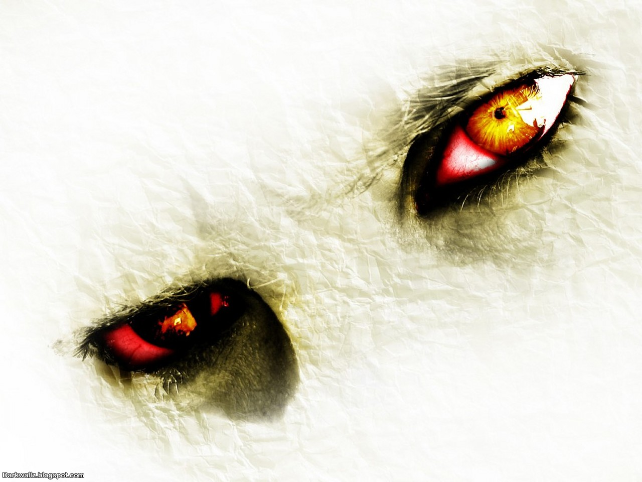 The Scary Eyes Wallpaper here you can see The Scary Eyes Wallpaper 1280x960