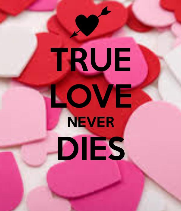 600x700px True Love Never Dies Wallpaper Wallpapersafari