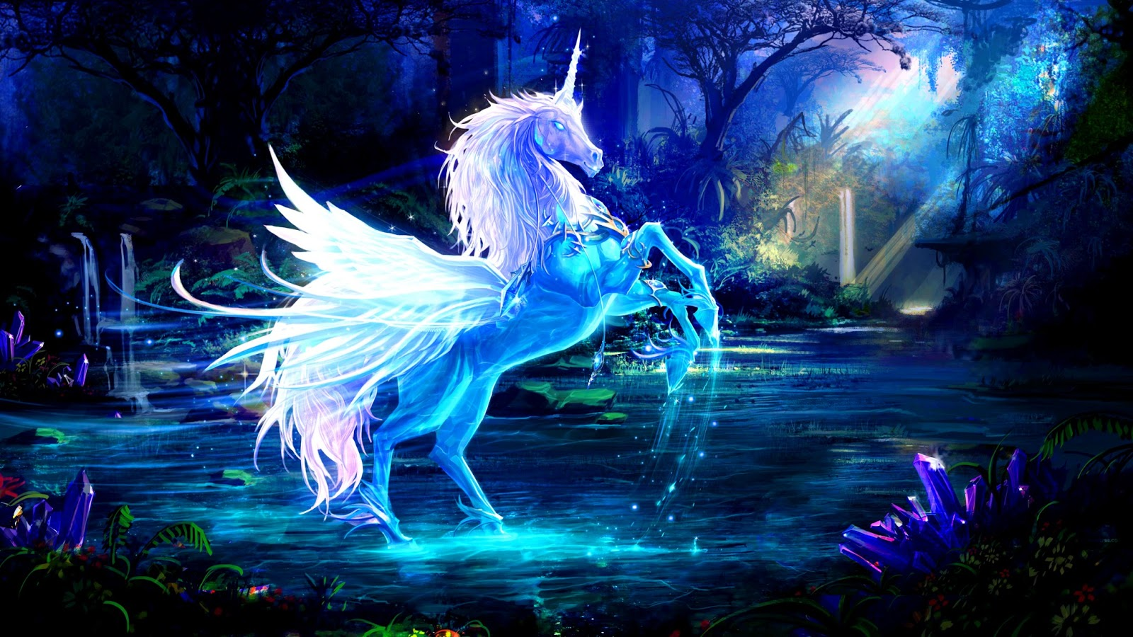 fantasy unicorn horse wallpapers widescreen high definition 1600x900