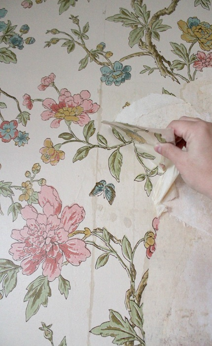 Tips for removing wallpaper from plaster walls without chemicals 430x700