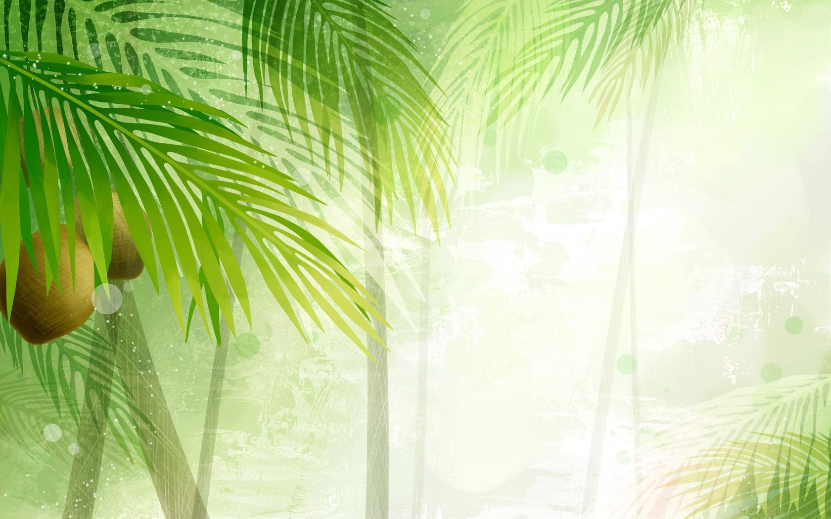 Download Palm trees in the sun wallpaper 1680x1050