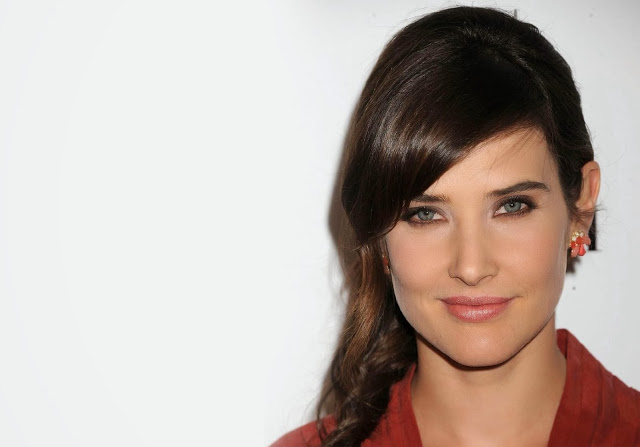 Cobie Smulders HD Wallpaper Beautiful Every Wallpaper 640x447