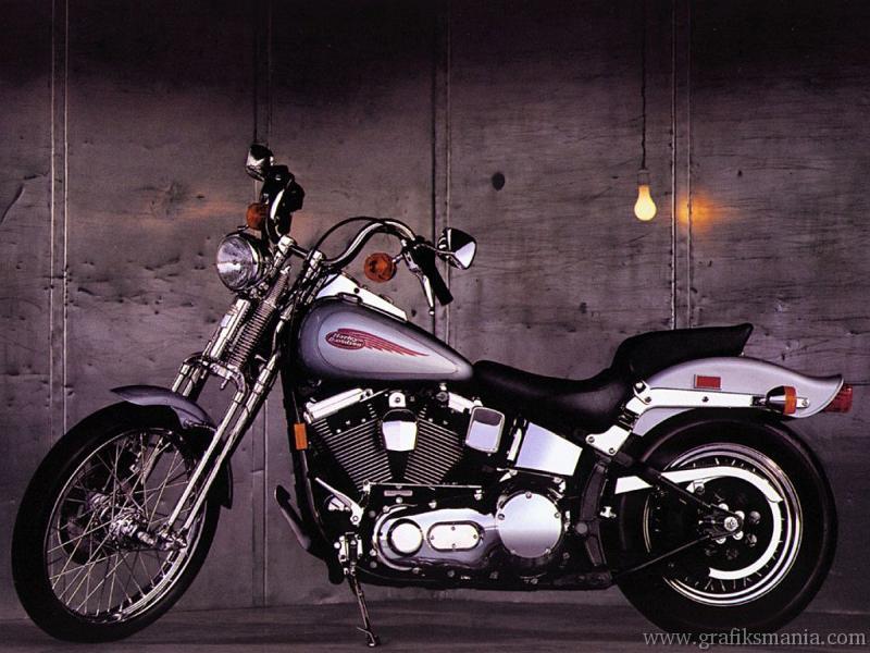 harley davidson motorcycle wallpaperjpg   Sfondi Motori Immagini Foto 800x600