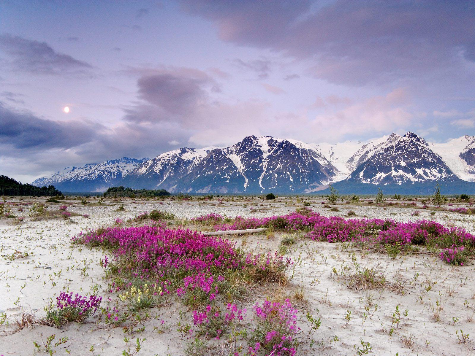 Fuentes de Informacin   Alaska 1600x1200