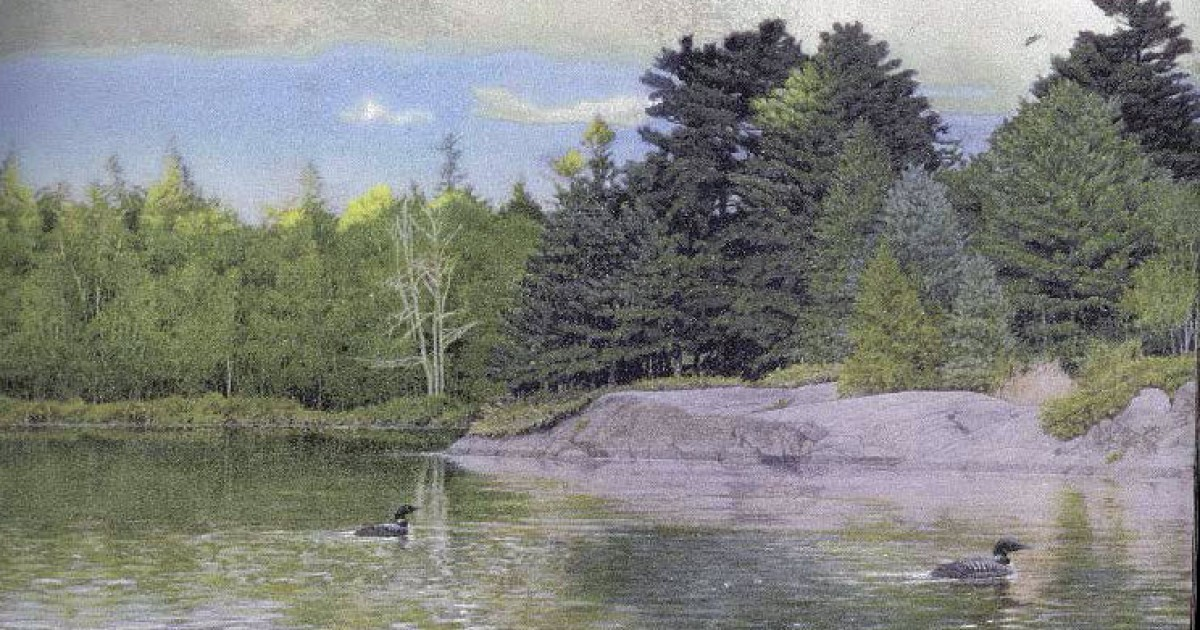 Lake Forest Wallpaper Border 1200x630