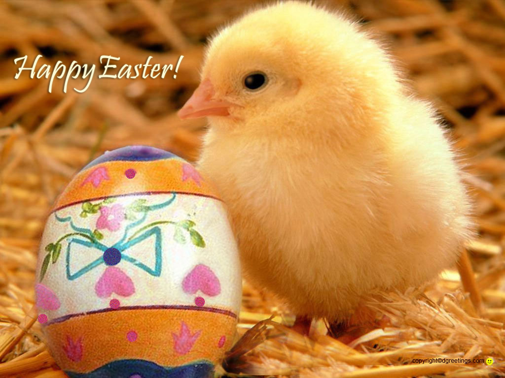 Cute Easter Wallpaper   Viewing Gallery 1024x768