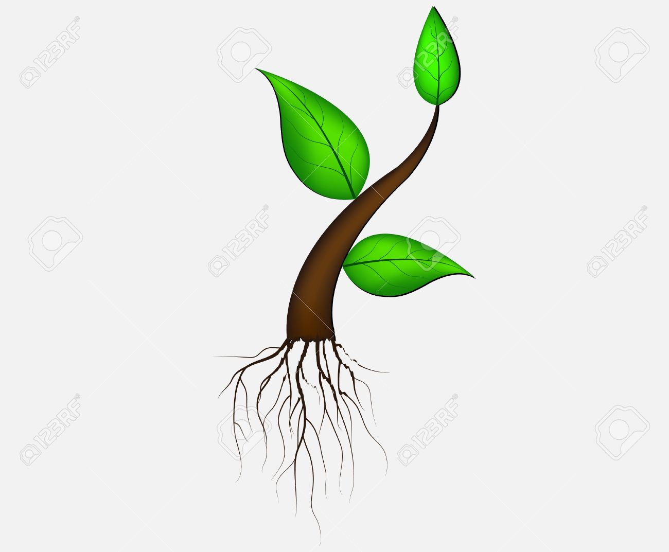 Illustration Of Plant Sapling Growing On Abstract Background 1300x1073