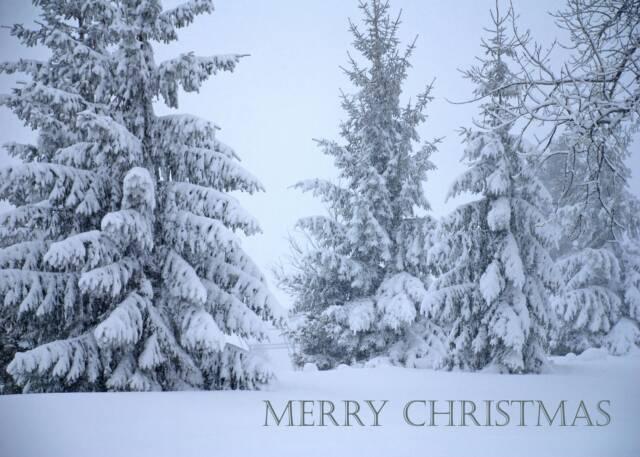 christmas desktop wallpaper Christmas Nature Wallpapers Natural 640x457
