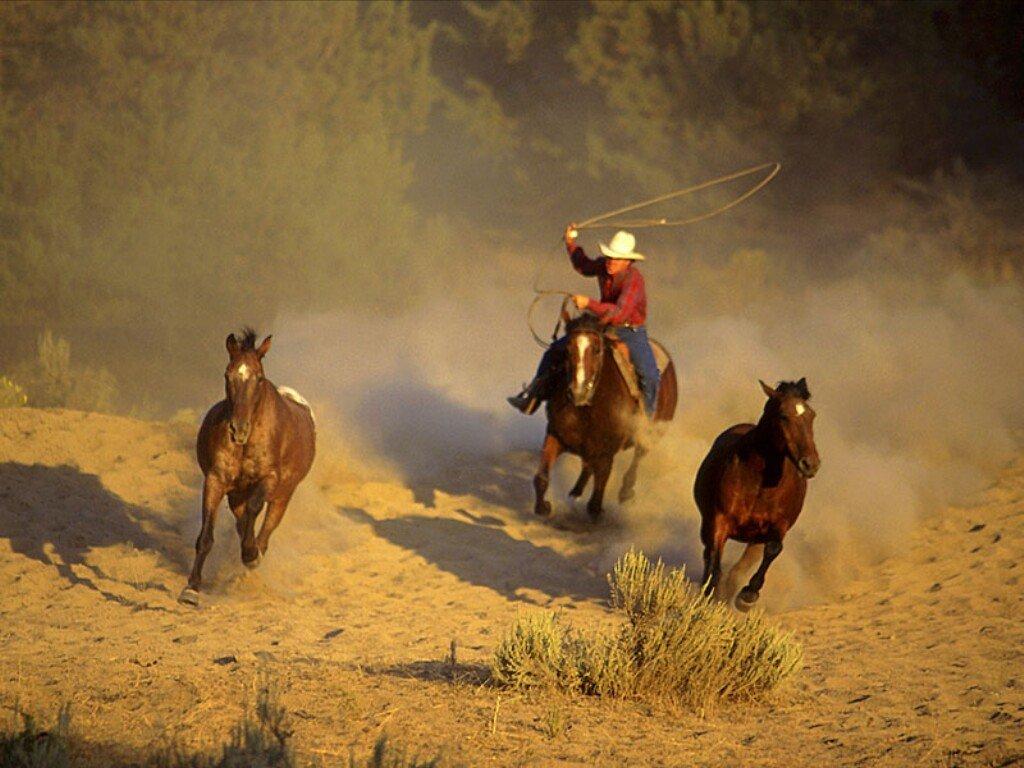 49 free western screensavers and wallpaper on - Cowboy wallpaper hd ...