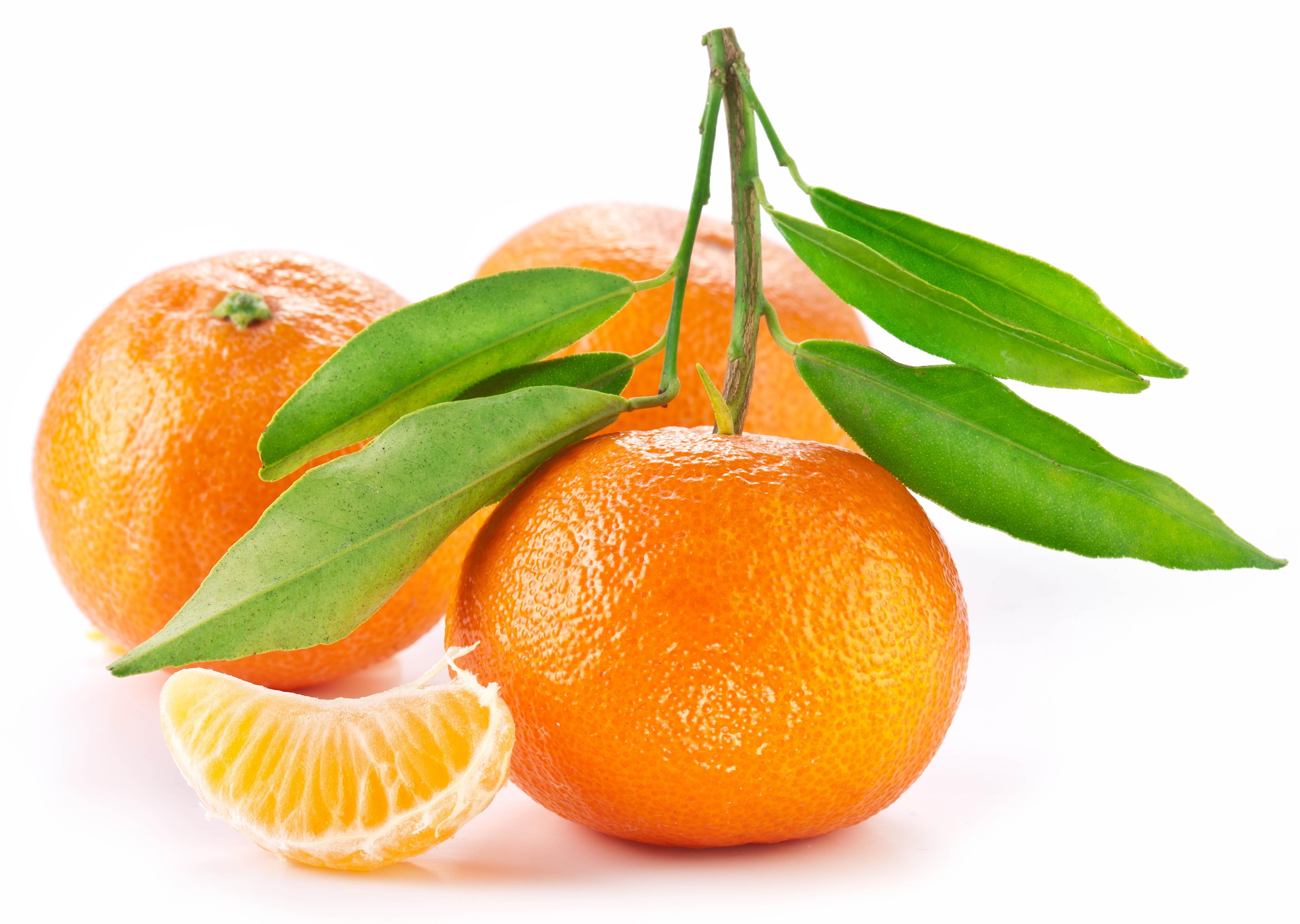 Download wallpaper 5267x3744 orange fruit white background leaf 5267x3744
