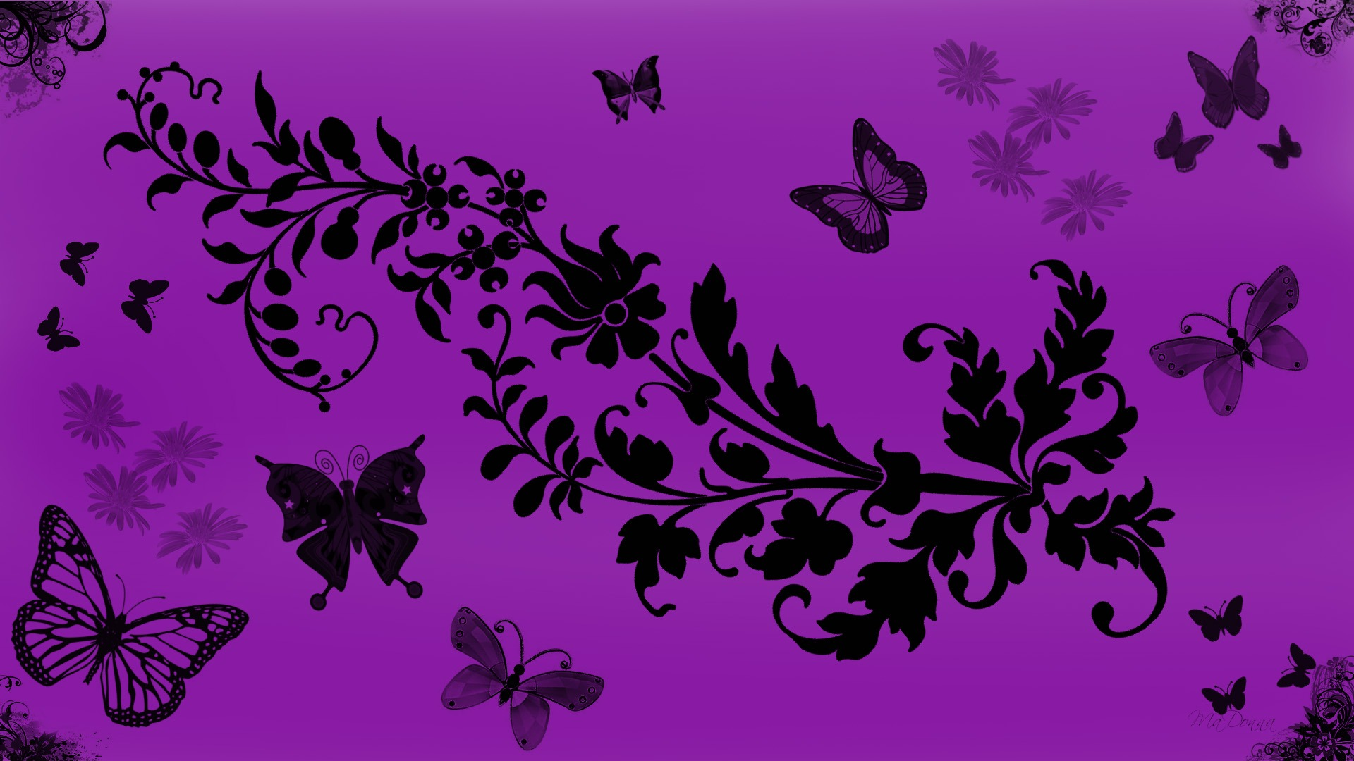Purple Butterfly Wallpaper Hd at Abstract Monodomo 1920x1080