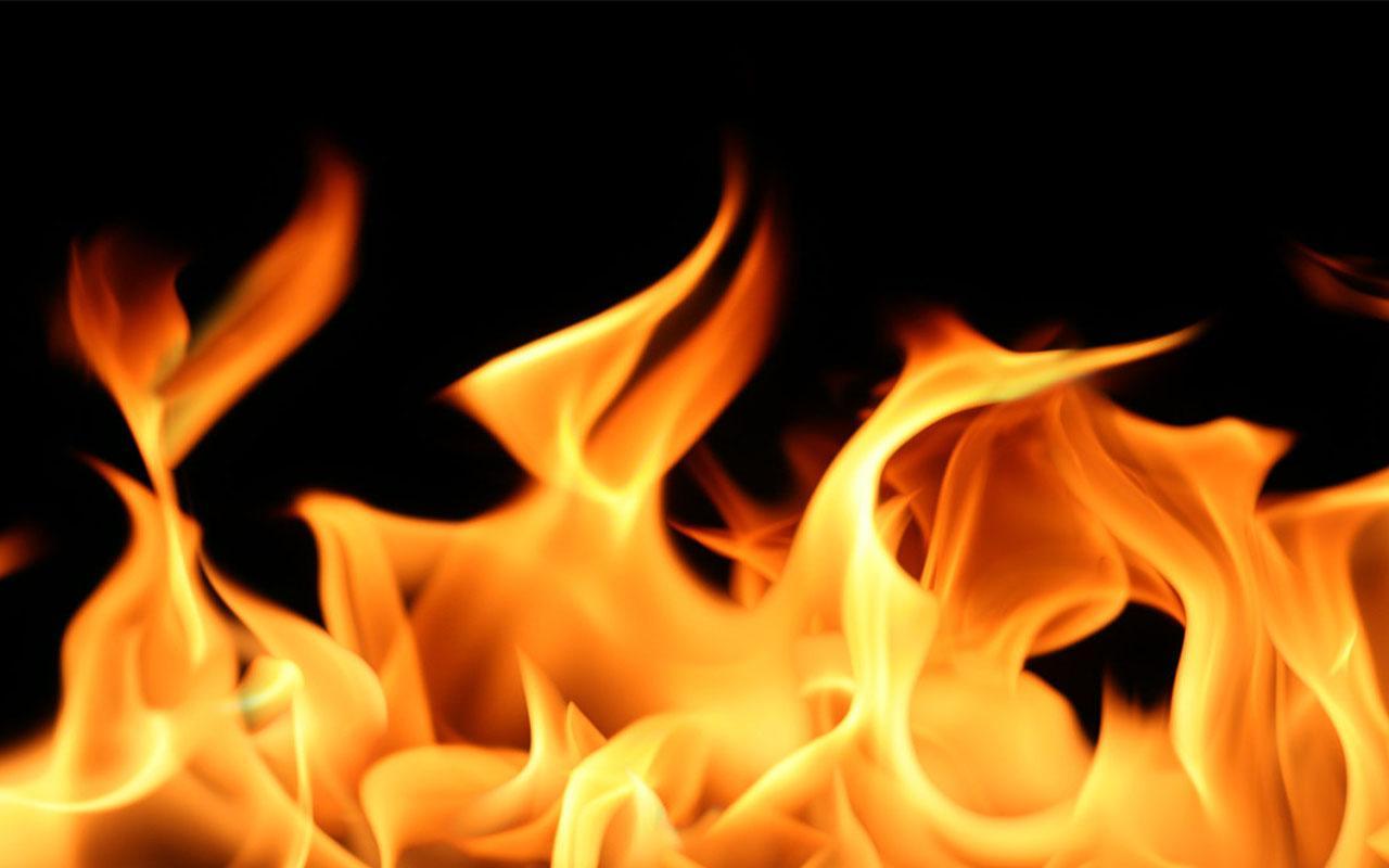 Fire Live Wallpaper screenshot thumbnail 5 1280x800