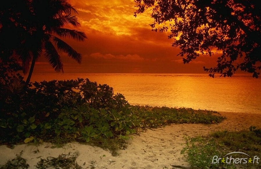 Download Sunset Beach Theme Sunset Beach Theme 22 Download 898x581