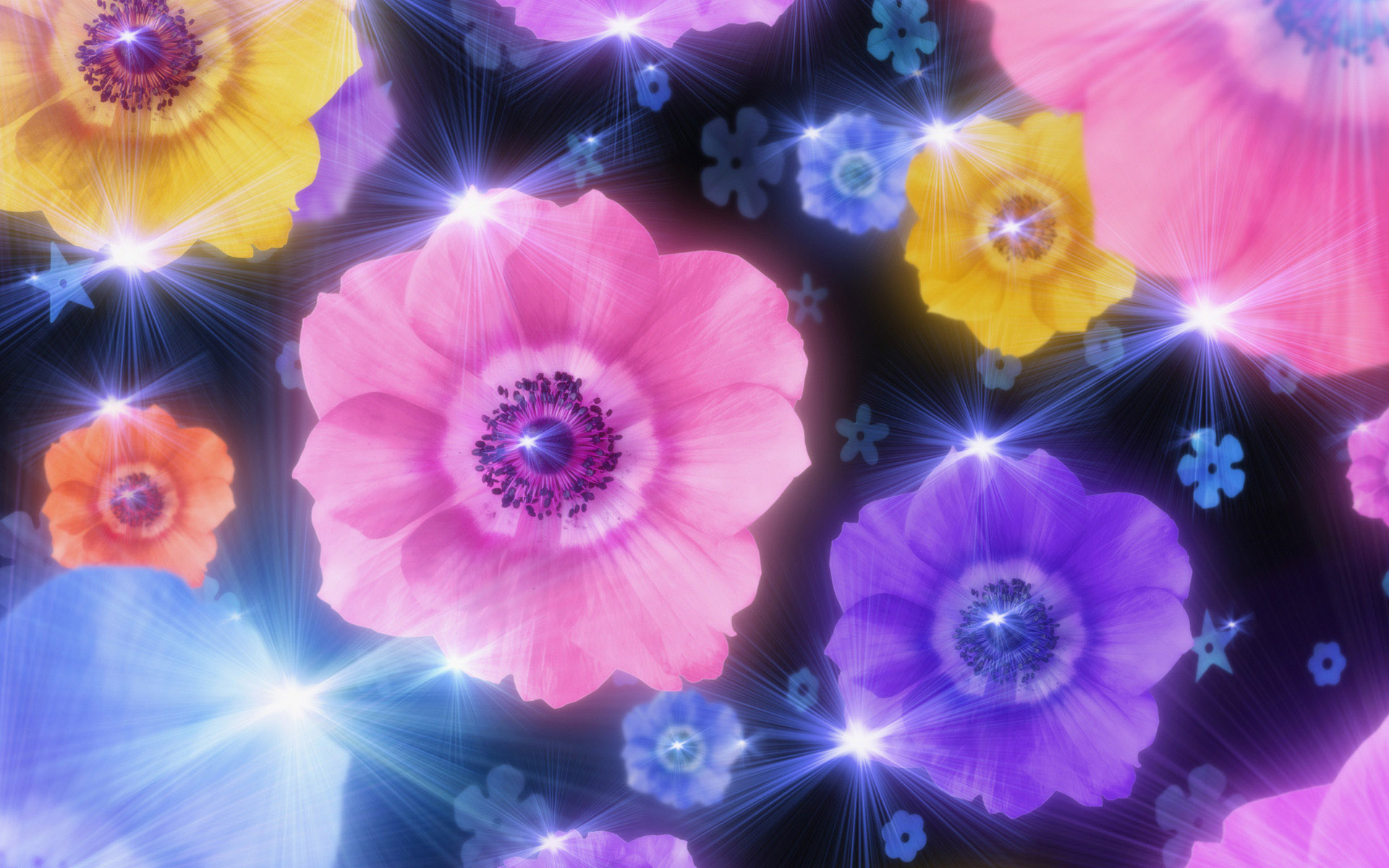 Animated Wallpaper Mobile Flower Background Image Wallpapers 1920x1200