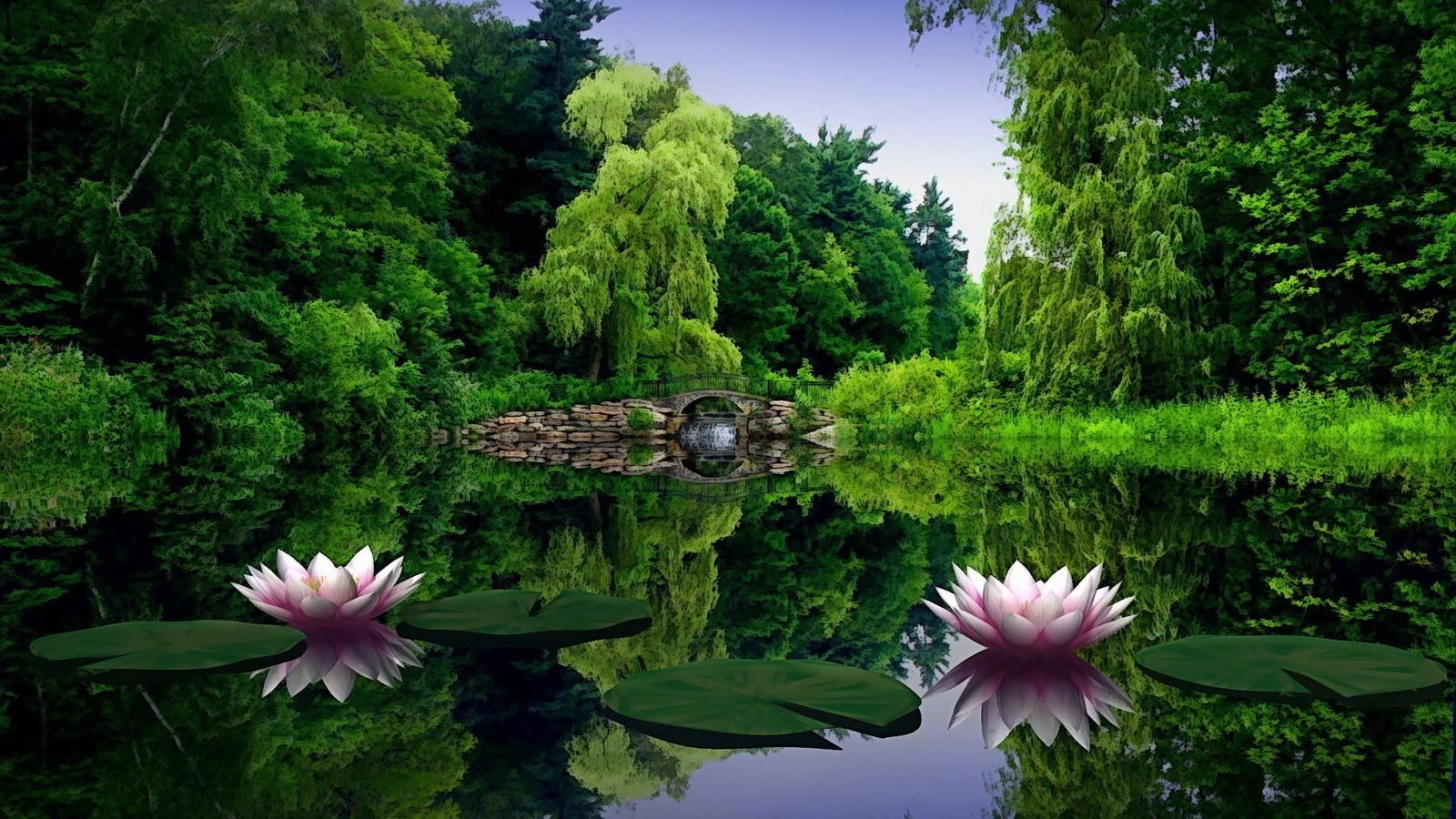 Download Green Nature Wallpaper 1600x900 Wallpoper 389759 1600x900