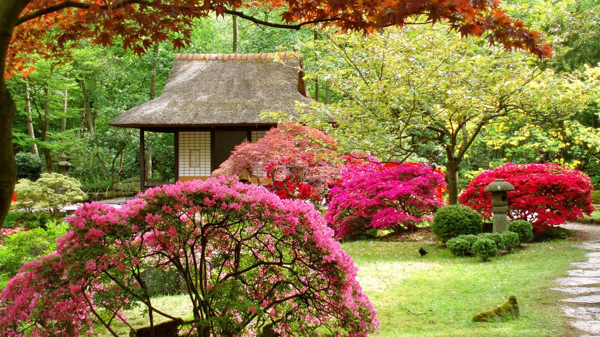 Spring gardens apartments Windows 8 Theme All for Windows 10 1920x1080