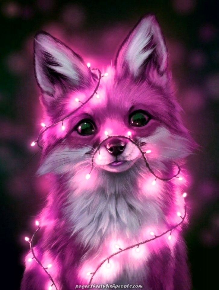 Incredible   funds Cute animal drawings Anime animals Animals 726x960