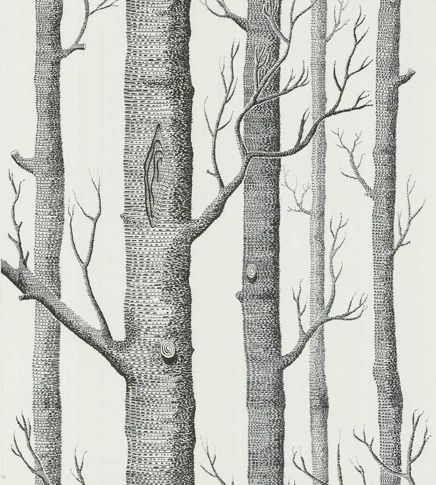 download Woods Wallpaper by Cole Son Jane Clayton [900x1000 900x1000