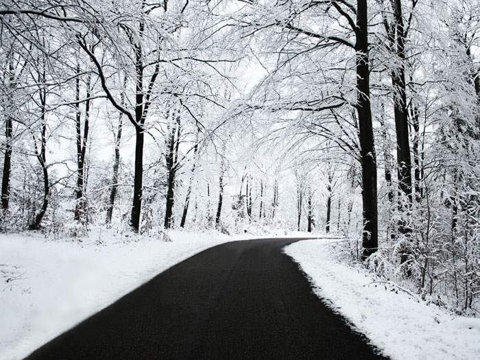 Winter Wallpaper 700x525