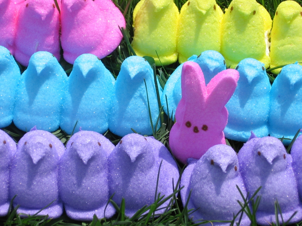 peeps easter candy desktop wallpaper -#main