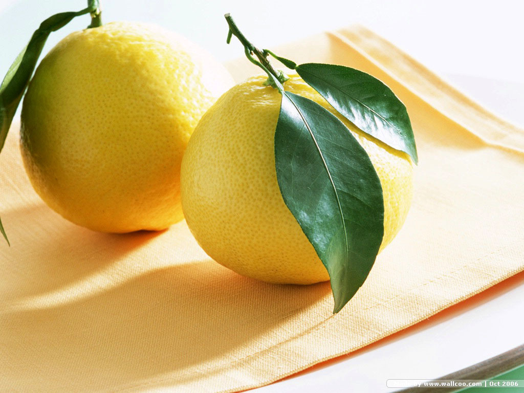Lemon Wallpaper   Fruit Wallpaper 6334028 1024x768