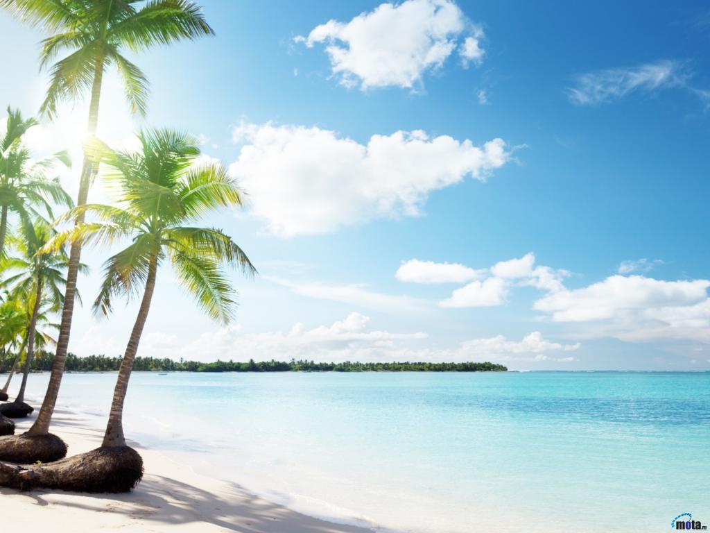 Download Wallpaper Ocean beach 1024 x 768 Desktop wallpapers and 1024x768