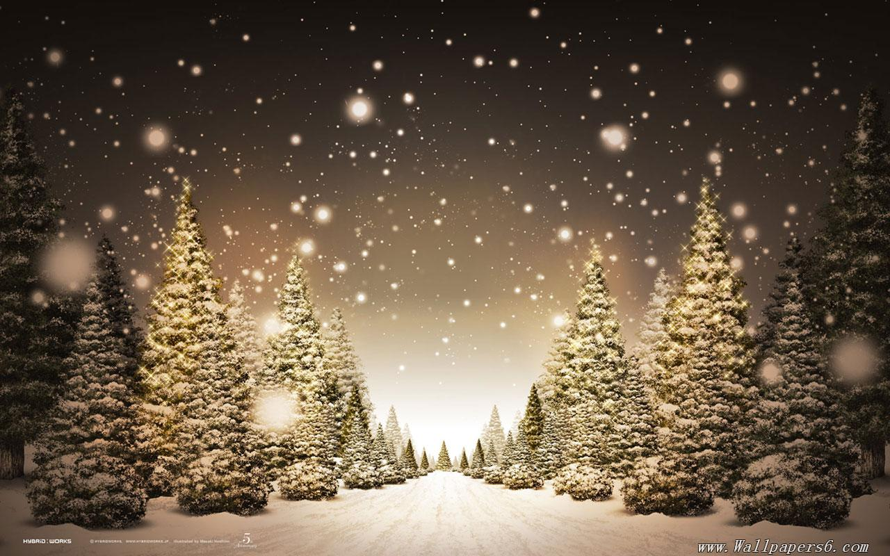winter snow christmas trees Landscape Wallpapers 1280x800