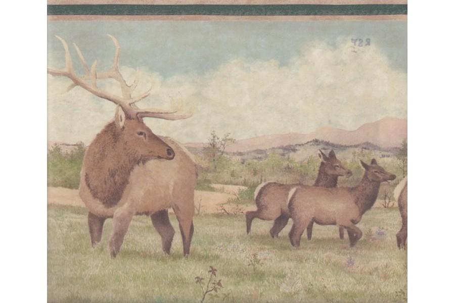 Beige Green Deer Scenery Wallpaper Border 900x600