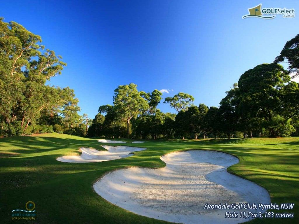 Golf Wallpaper Widescreen 2956 Hd Wallpapers in Sports   Imagescicom 1024x768
