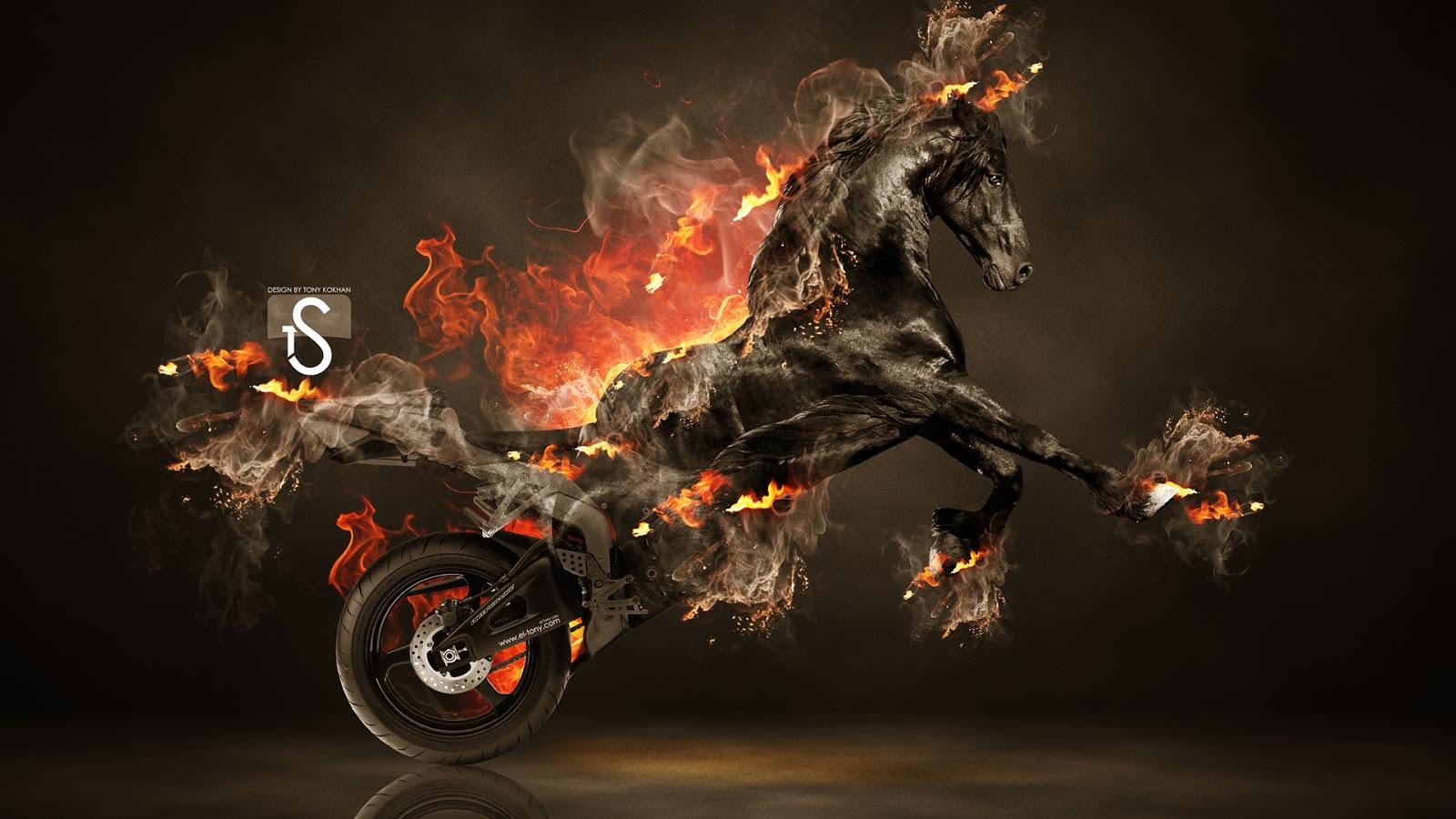 Fire Horse HD Wallpaper 1600x900