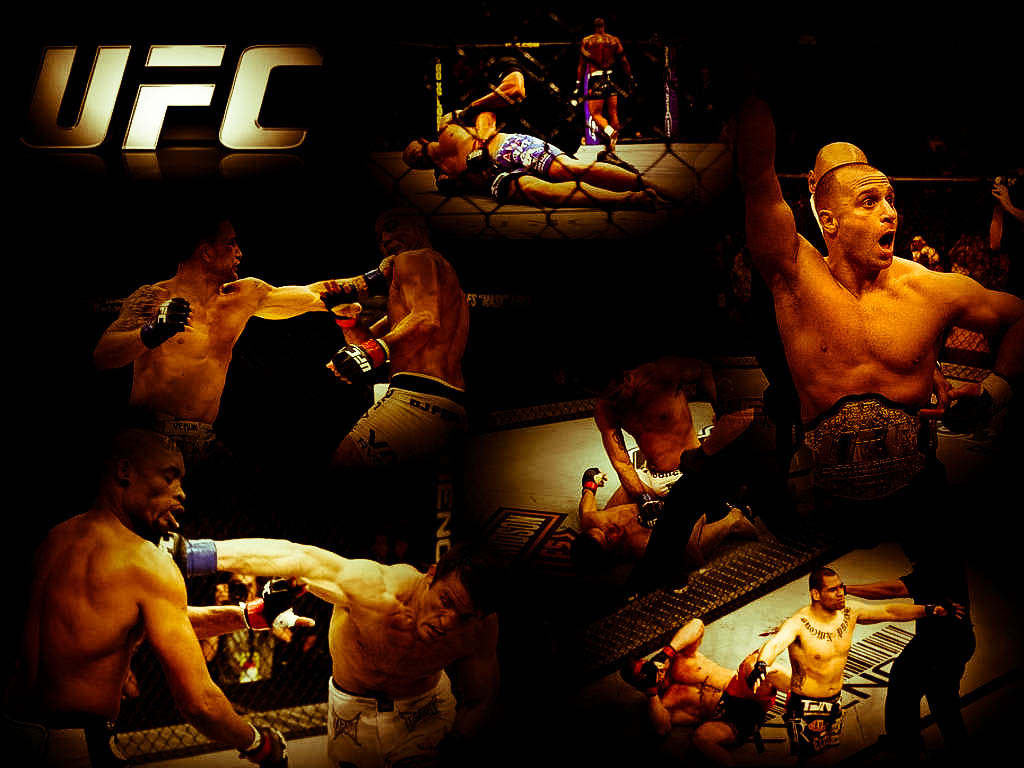 ufc ultimate fighting championship mma mixed martial arts wallpaper 1024x768