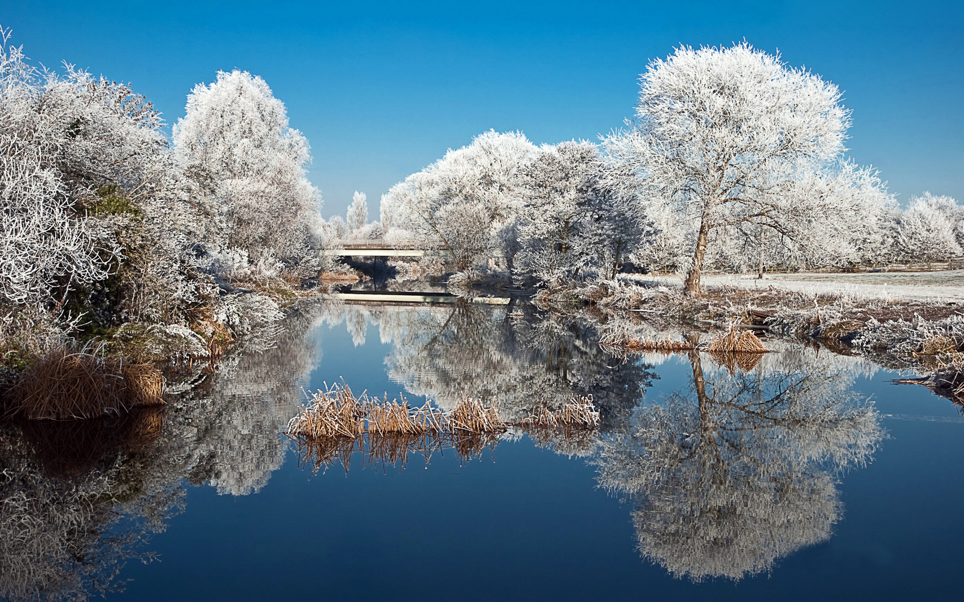 Snow Scenery Wallpaper   Viewing Gallery 1920x1200