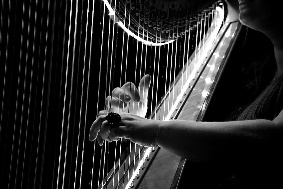 HD wallpaper grayscale photo of person playing harp concert 910x607