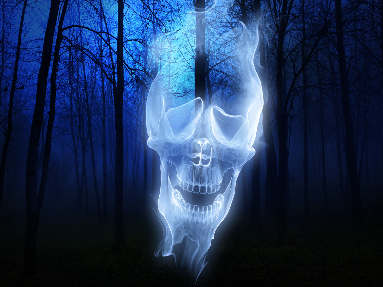 Forest Skull Ghost wallpapers Forest Skull Ghost stock photos 1600x1200